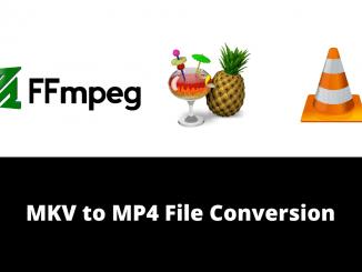 MKV to MP4 File Convertor